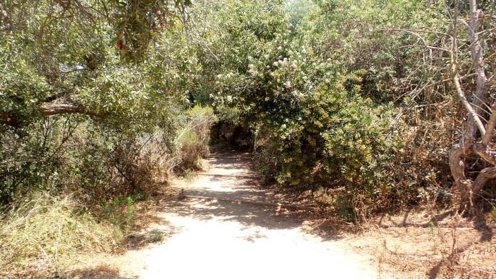 4 Annies Canyon Hiking Trail.jpg