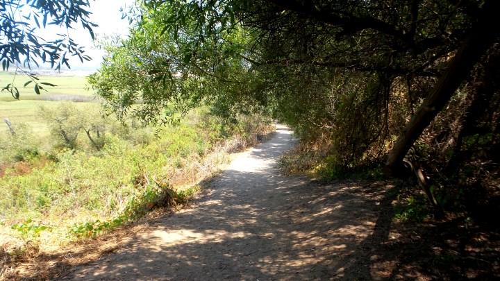 5 Annies Canyon San Diego.jpg