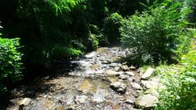 10 Amicalola Falls