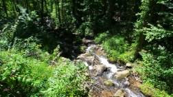 22 Amicalola Falls