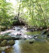 3 Amicalola Falls
