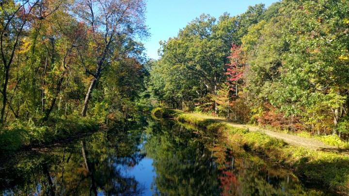 12 Mine Falls Park Canal.jpg