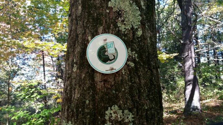 2 Bay City Circuit Trail.jpg