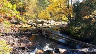 21 Wildcat Falls River