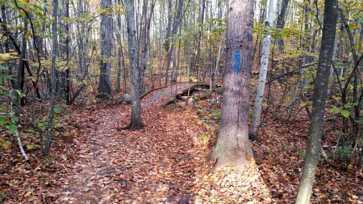 23 Horse Hill Nature Preserve Bridge Merrimack Hiking.jpg