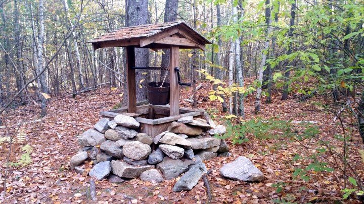 6 Horse Hill Nature Preserve Well in the Woods