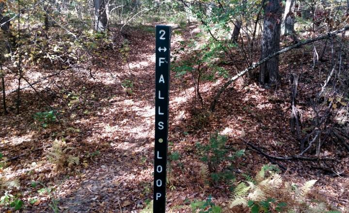 6 Wildcat Falls Loop Hiking Trail NH.jpg