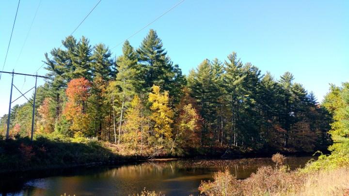 7 Wildcat Falls Autumn Colors Merrimack.jpg