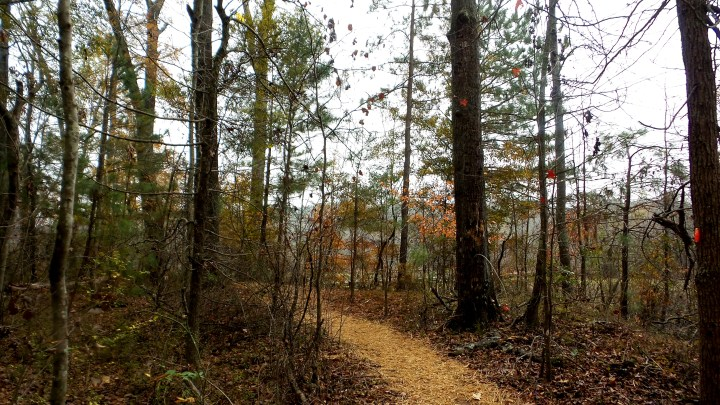 17 Constitution Lakes Hiking Trail.jpg
