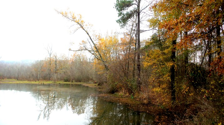 8 Constitution Lakes in the Fall