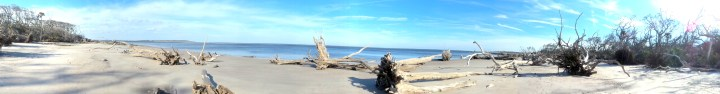 0 Blackrock Beach White Driftwood Panorama Nature Shot.jpg