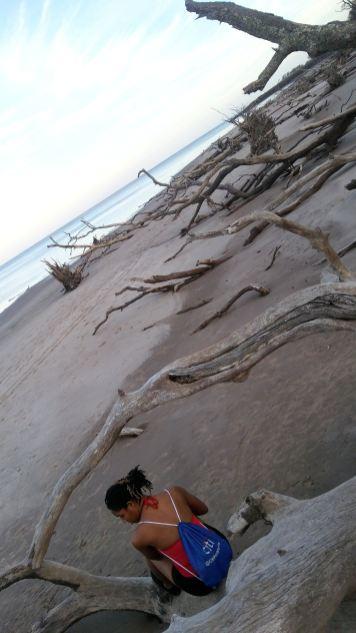 2 Alexis Chateau Blackrock Beach Florida