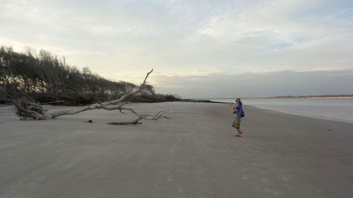 47 Blackrock Beach Driftwood Winston Murray