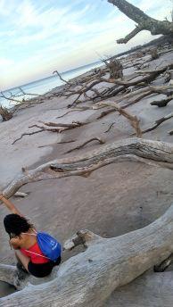 5 Alexis Chateau Blackrock Beach Florida Trip