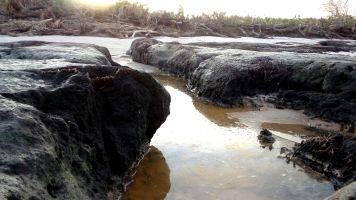 50 Blackrock Beach