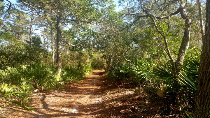 6 Blackrock Beach Hiking Trail
