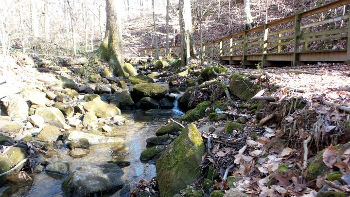 18 Cascade Springs Nature Preserve Utoy Creek.jpg