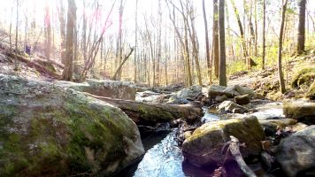 26 Cascade Springs Nature Preserve Utoy Creek