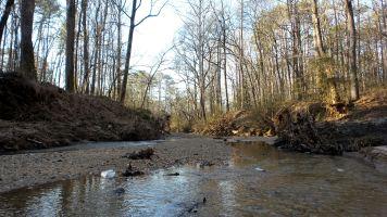 32 Cascade Springs Nature Preserve Utoy Creek Georgia