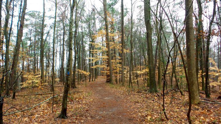 4 East Palisades Hiking Trail.jpg
