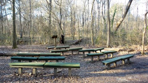 40 Cascade Springs Nature Preserve Lecture Hall in the Woods