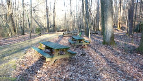 44 Cascade Springs Nature Preserve Sitting Area