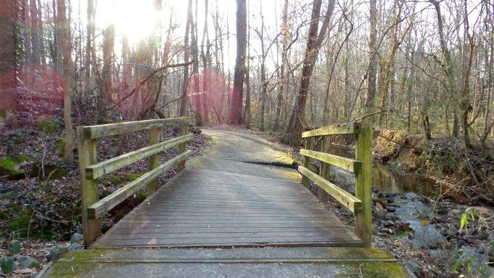 46 Cascade Springs Nature Preserve Dilapidated Bridge.jpg