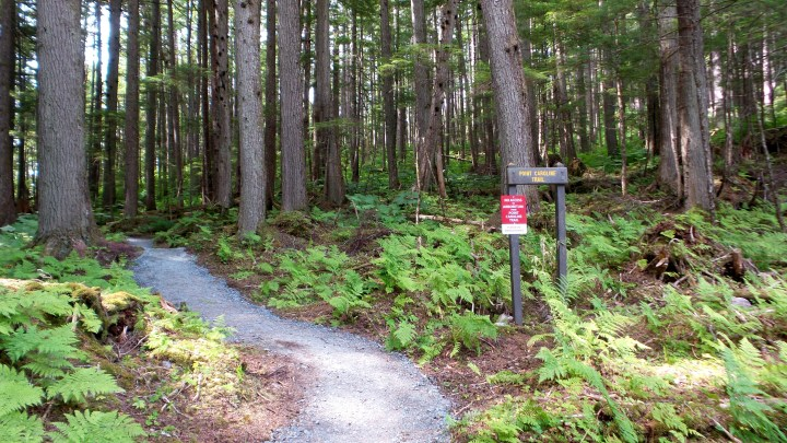 02 Jensen Olson Arboretum Alaska Flowers Point Caroline Trail.jpg