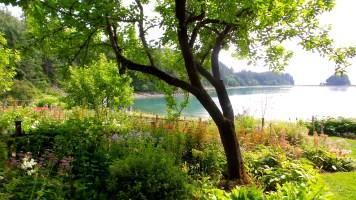 16 Jensen Olson Arboretum Alaska Flowers