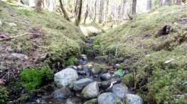 17 West Glacier Trail Juneau Alaska
