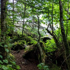 20 Saint Therese Shrine Alaska