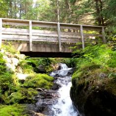 23 West Glacier Trail Juneau Alaska Bridge