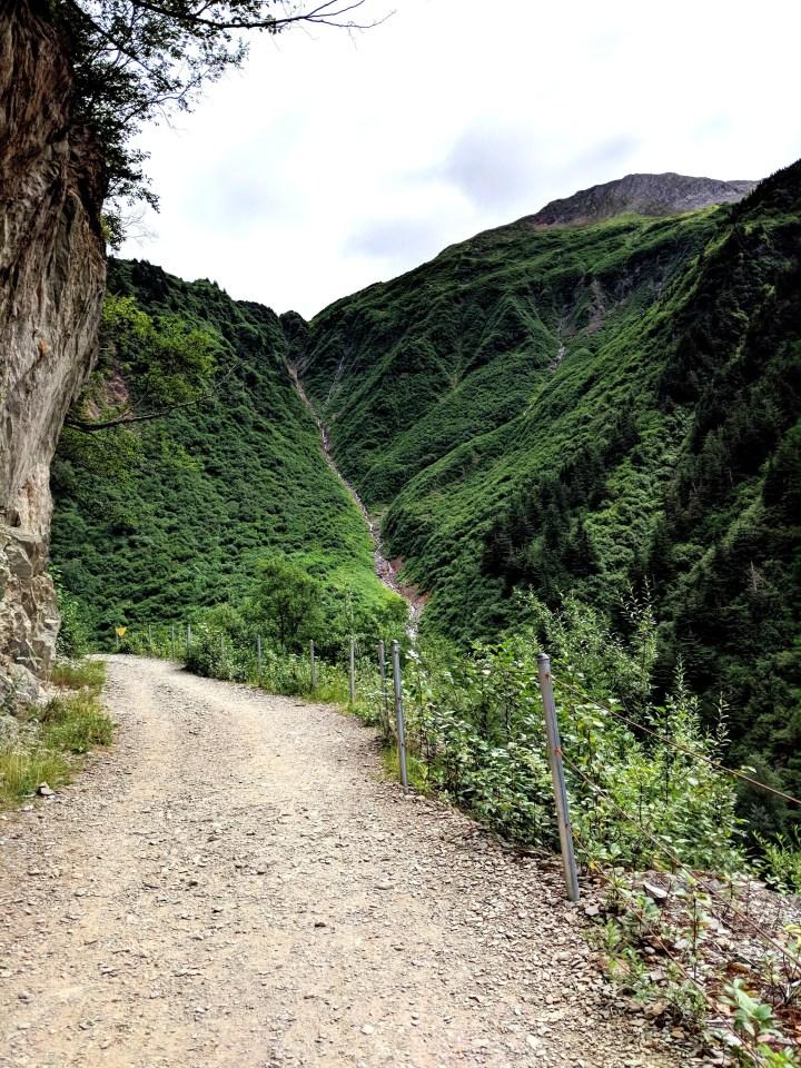05 Perseverence Trail Mount Juneau Alaska.jpg