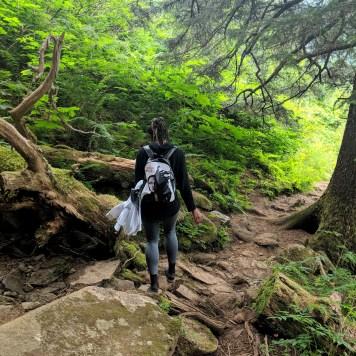 20 Mount Juneau Alaska Hiking Trail Alexis Chateau