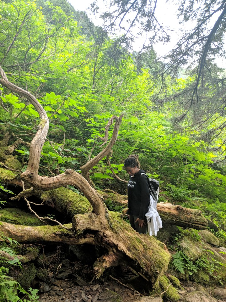 22 Mount Juneau Alaska Hiking Trail Alexis Chateau.jpg
