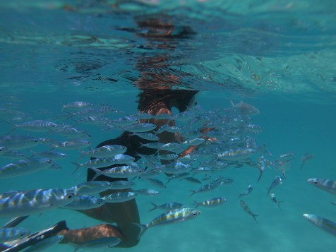 Alexis-Chateau-Snorkelling-6