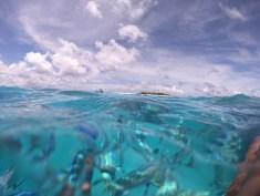 Imran-Snorkelling-in-the-Maldives