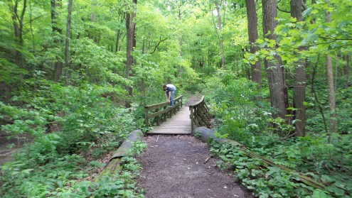 twotonetheartist nature hiking bridge