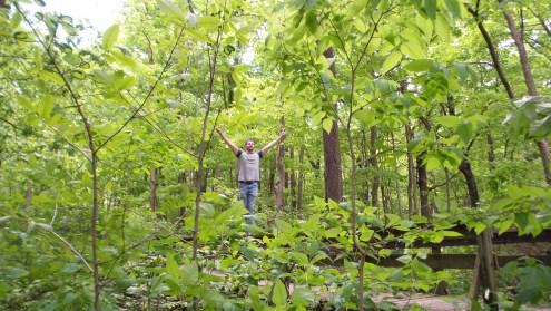 twotonetheartist detweiller park hiking trail