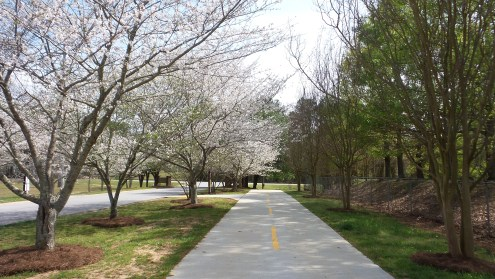 Atlanta GA Spring Hiking