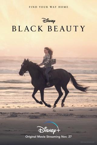 Black Beauty Key Art