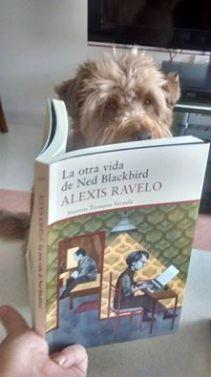 Nacho, compartiendo Ned Blackbird con Pilar García
