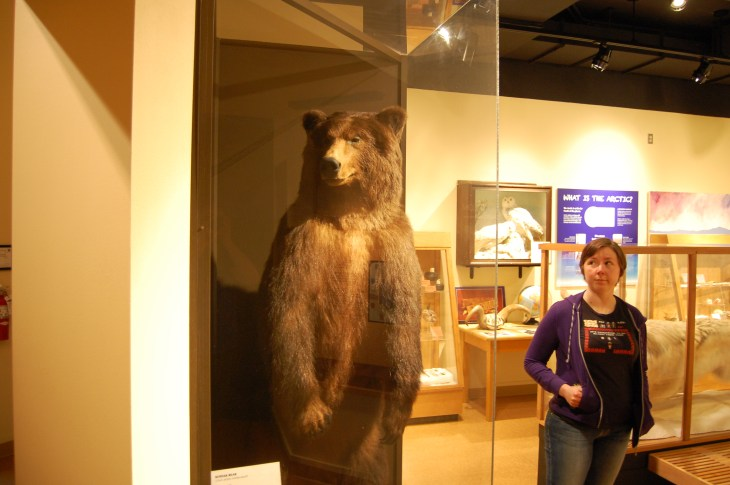 Ber and a Kodiak Bear