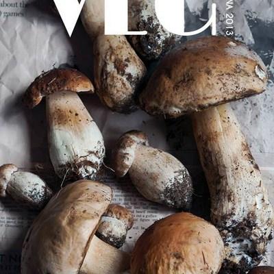 Revista VEG – Toamna 2013 / Numarul 2