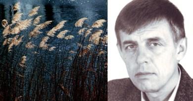 Василий Краснов