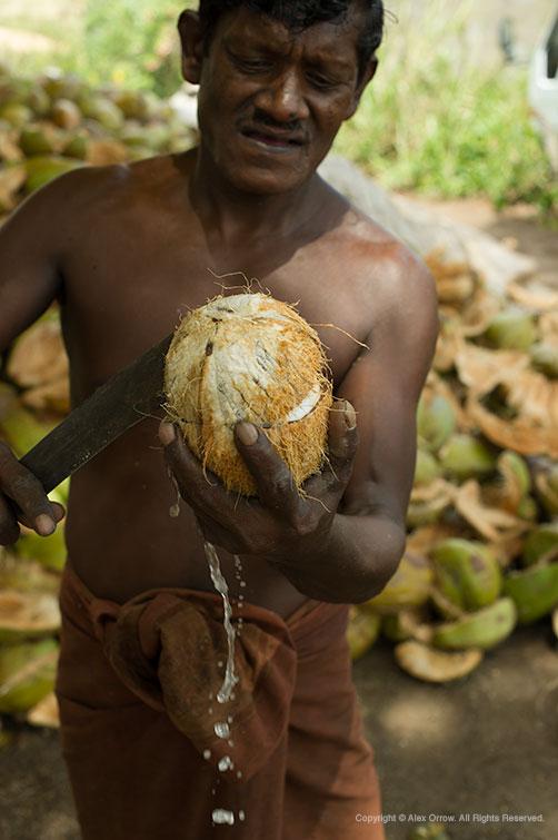 Travel Photography Sri Lanka