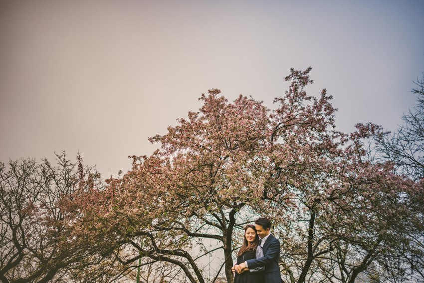 Cherry blossom engagement portraits