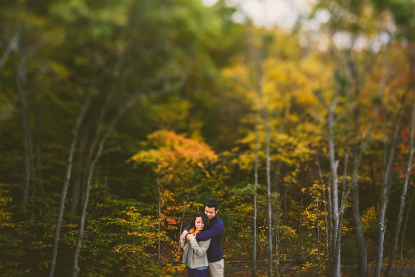 fall foliage engagement photos