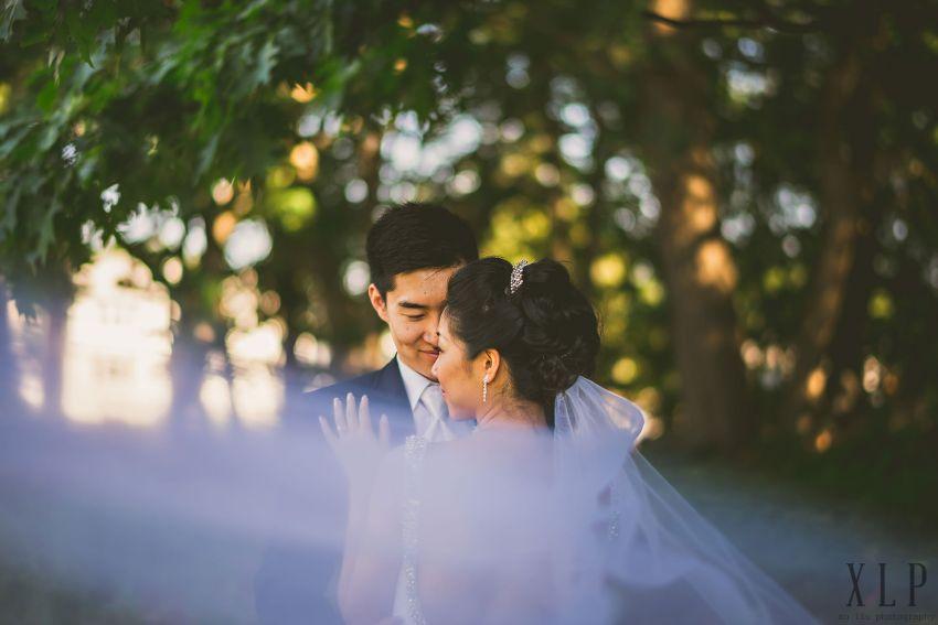 Dramatic wedding veil portrait