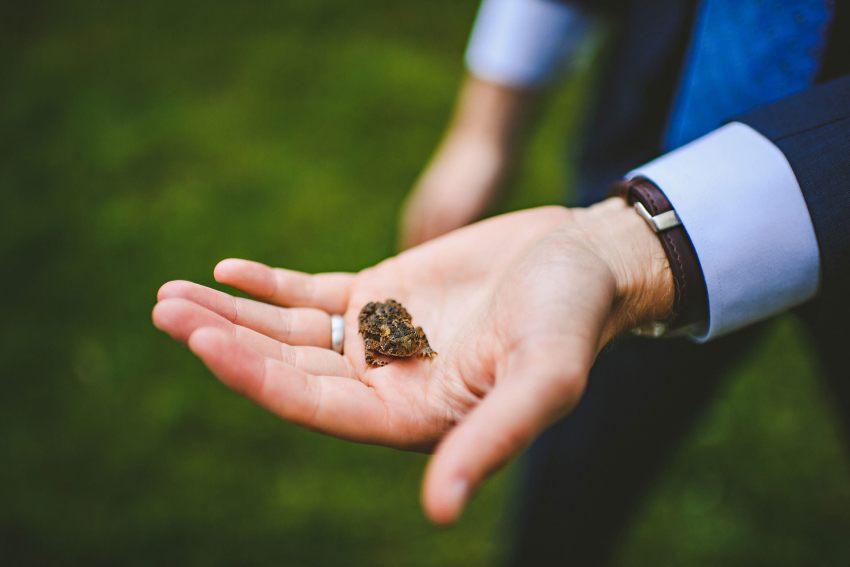 Groom holding frog